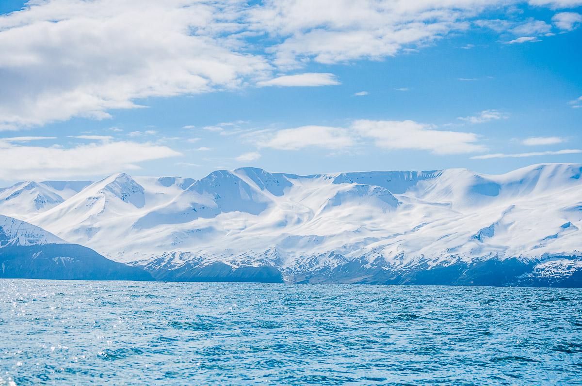 fjorden ijsland