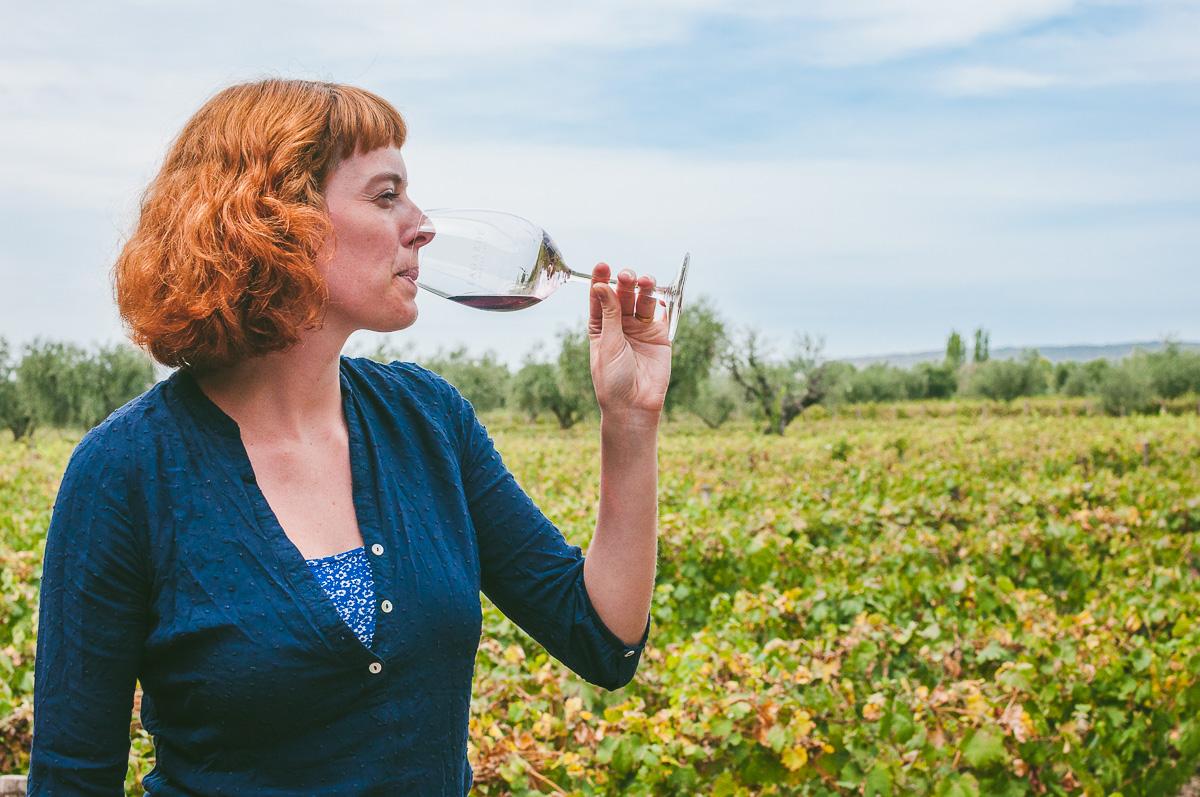 Op wijntour in Mendoza: Malbec slurpen aan de voet van de Andes